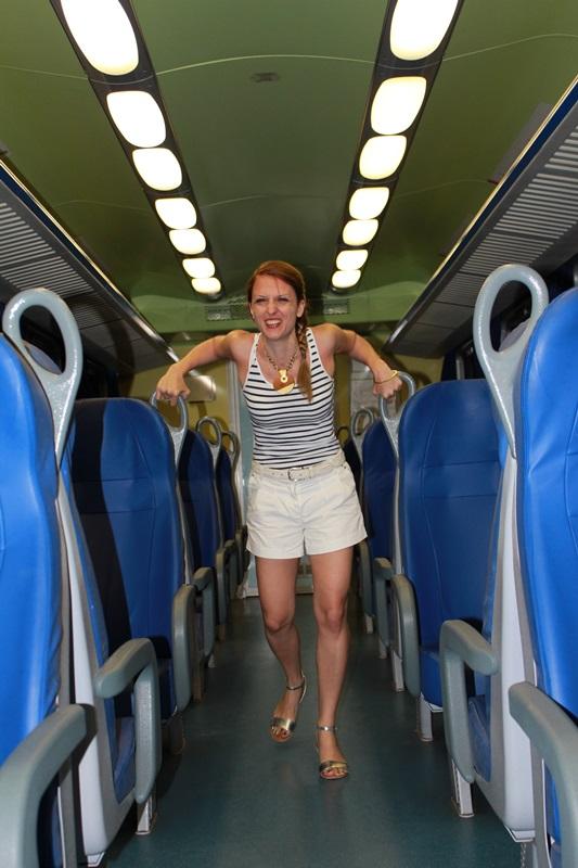 IndianSavage train4