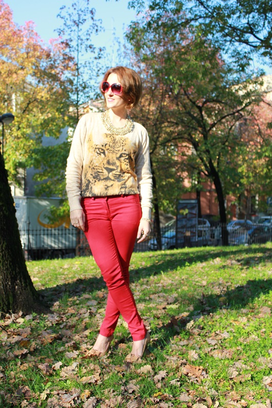 Indian Savage Margaret Dallospedale The Indian Savage diary red pants & Tiger sweater 3