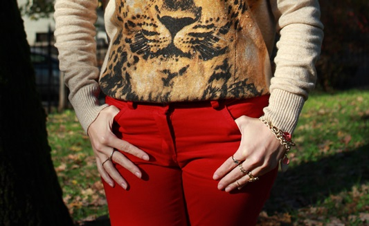 Indian Savage Margaret Dallospedale The Indian Savage diary red pants & Tiger sweater 8