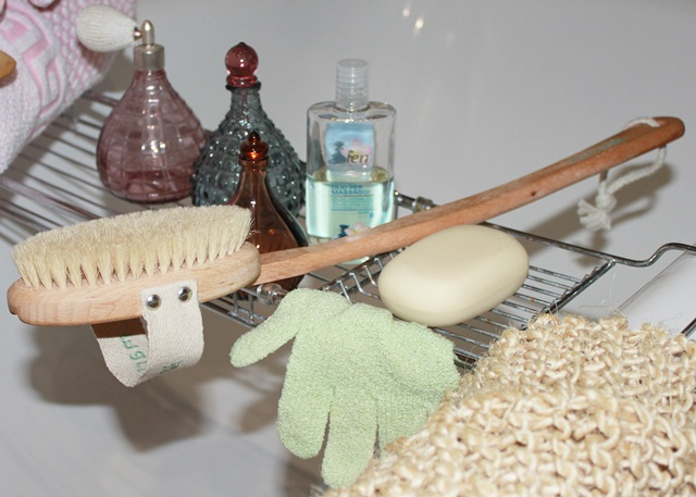 Dry Body Brushing Indian Savage Margaret Dallospedale The Indian Savage diary 5