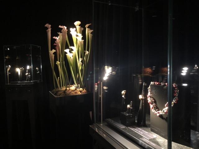 Carnivorous, la linea di gioielli di Gianni De Benedittis