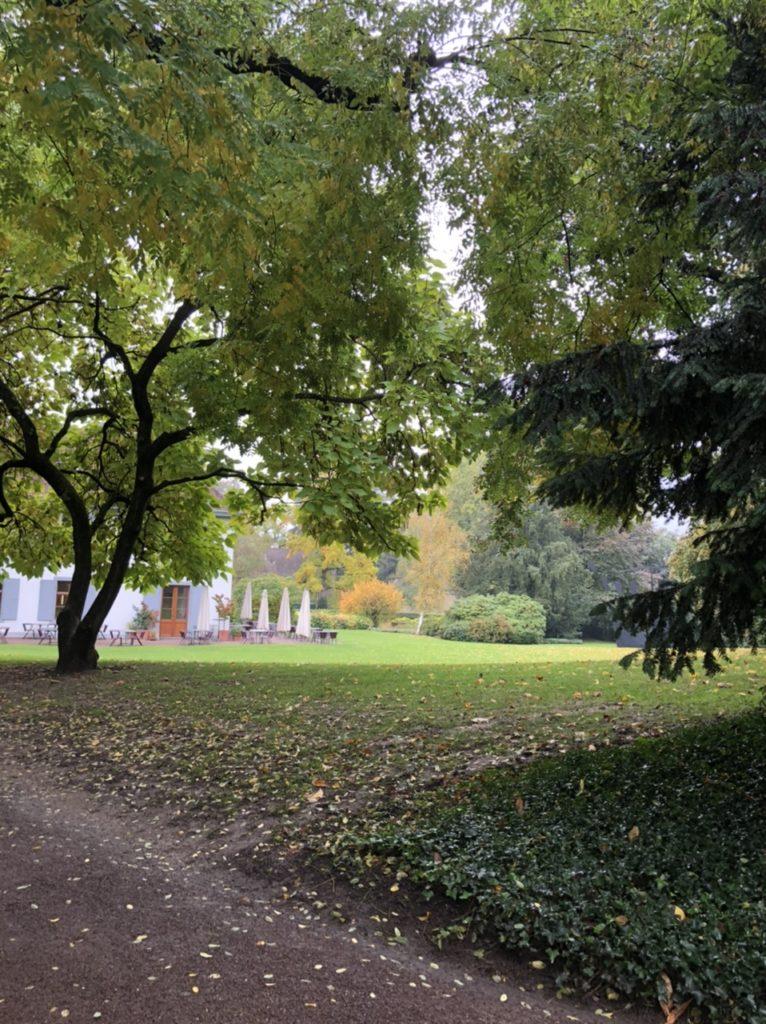 Basilea: la città dove l'arte è espressione quotidiana