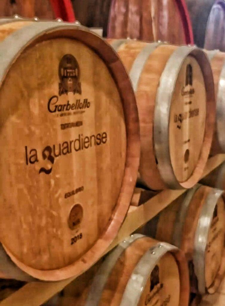 Il vino delle Janare: alla scoperta della Falanghina del Sannio