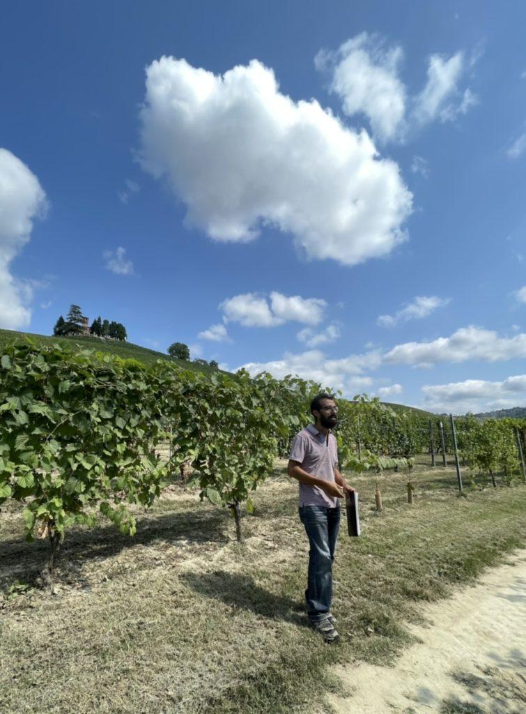 Grinzane Cavour: più di 500 vitigni  storici e inestimabili